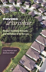 paving-paradise-pittman-waite-cover-alt