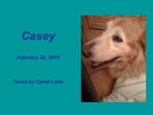 CaseyLenz_slide
